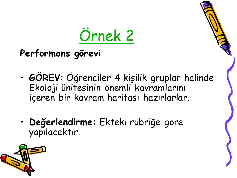 Örnek 2 Performans görevi
