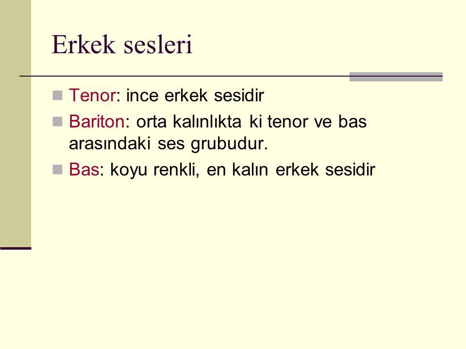 Erkek sesleri Tenor: ince erkek sesidir