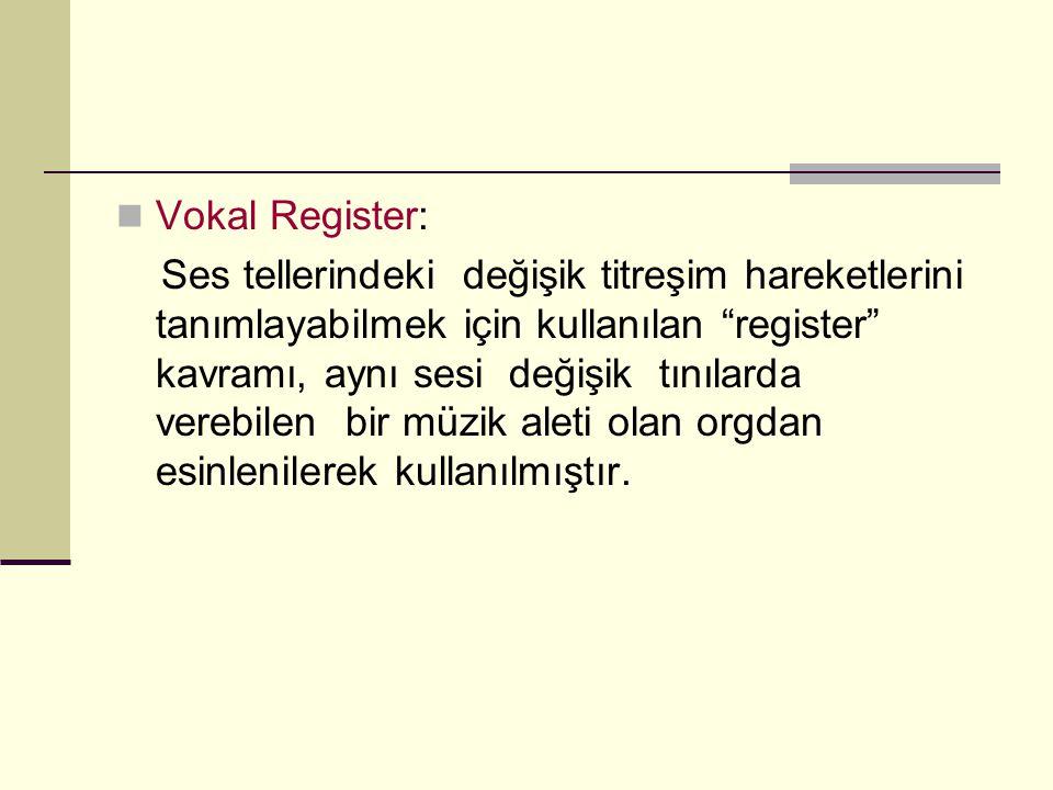 Vokal Register: