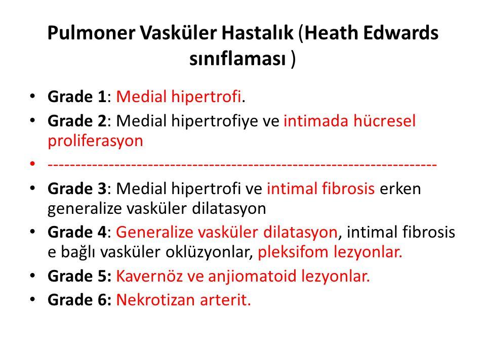 Pulmoner Vasküler Hastalık (Heath Edwards sınıflaması )