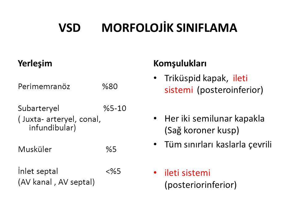 VSD MORFOLOJİK SINIFLAMA