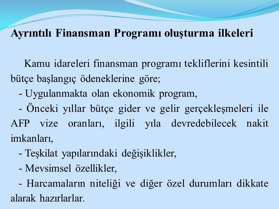 Ayrıntılı Finansman Programı oluşturma ilkeleri
