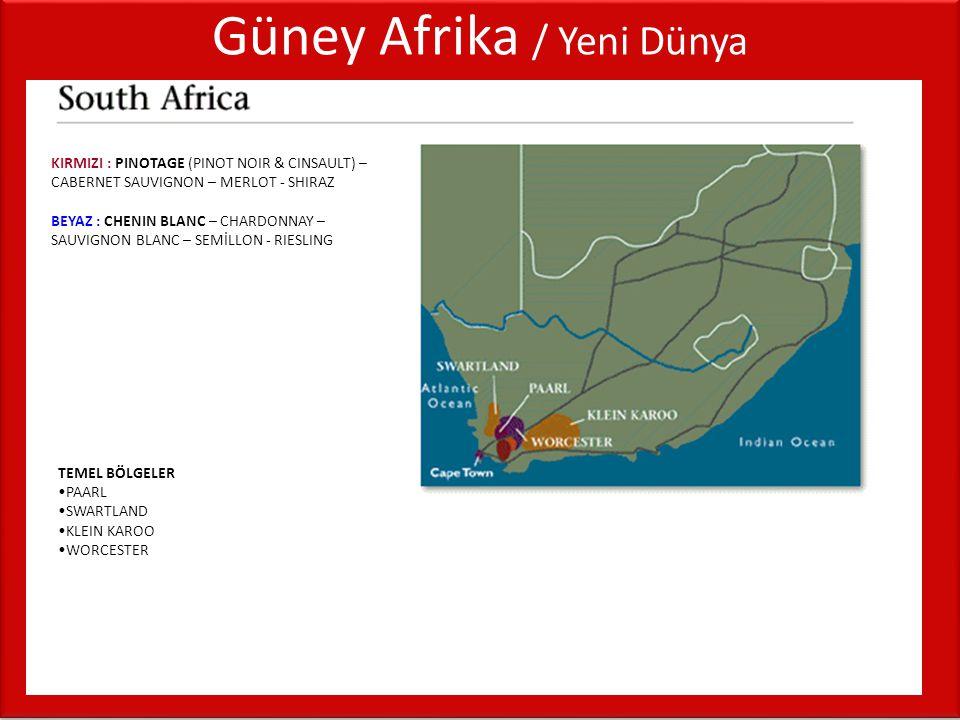 Güney Afrika / Yeni Dünya