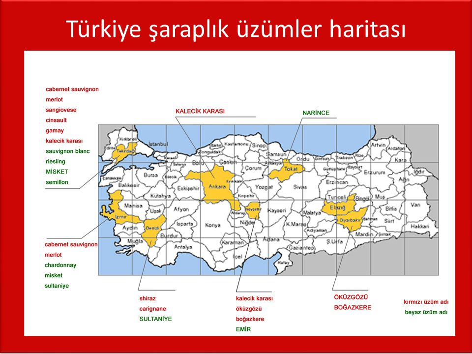 Türkiye şaraplık üzümler haritası