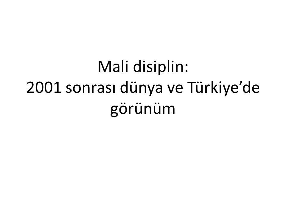 Mali disiplin: 2001 sonrası dünya ve Türkiye'de görünüm