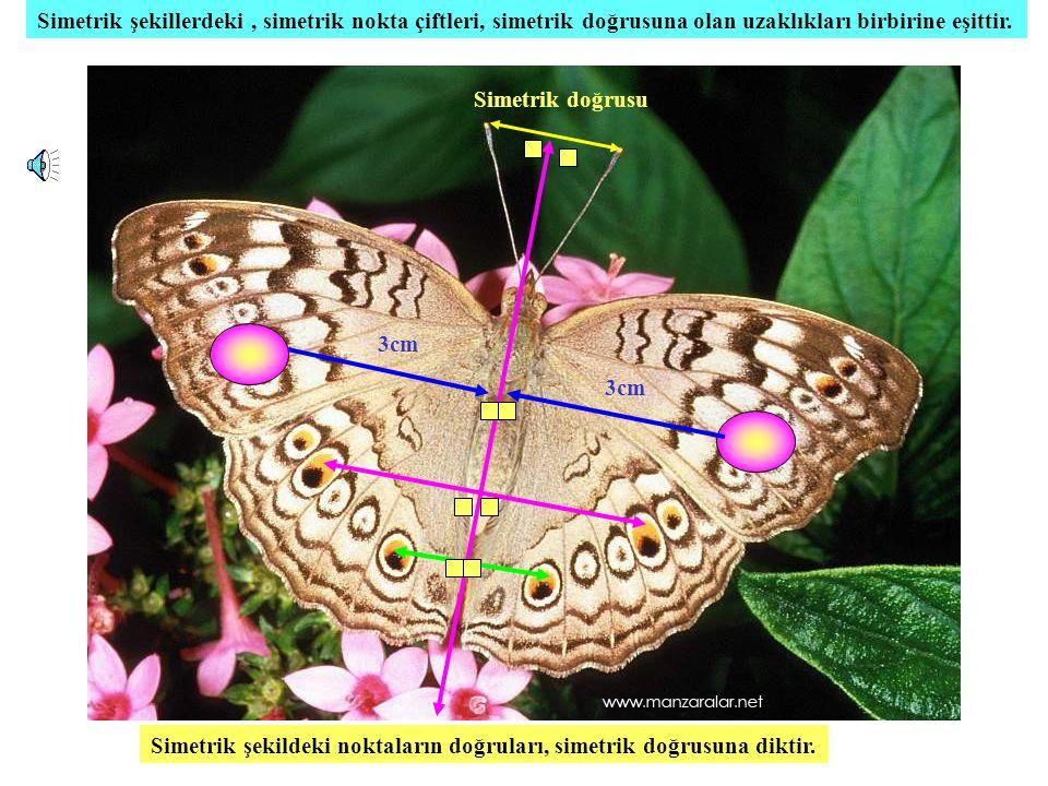 Simetrik şekillerdeki , simetrik nokta çiftleri, simetrik doğrusuna olan uzaklıkları birbirine eşittir.
