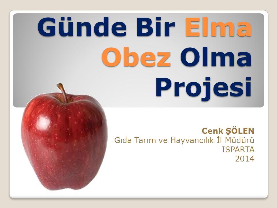 Günde Bir Elma Obez Olma Projesi