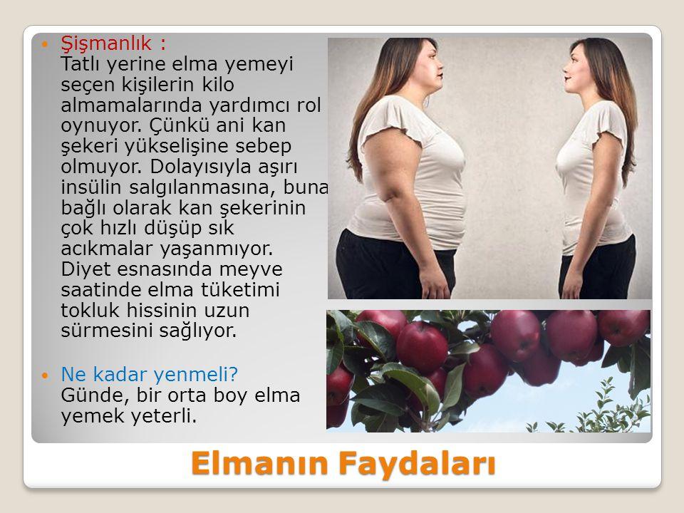 Şişmanlık : Tatlı yerine elma yemeyi seçen kişilerin kilo almamalarında yardımcı rol oynuyor. Çünkü ani kan şekeri yükselişine sebep olmuyor. Dolayısıyla aşırı insülin salgılanmasına, buna bağlı olarak kan şekerinin çok hızlı düşüp sık acıkmalar yaşanmıyor. Diyet esnasında meyve saatinde elma tüketimi tokluk hissinin uzun sürmesini sağlıyor.