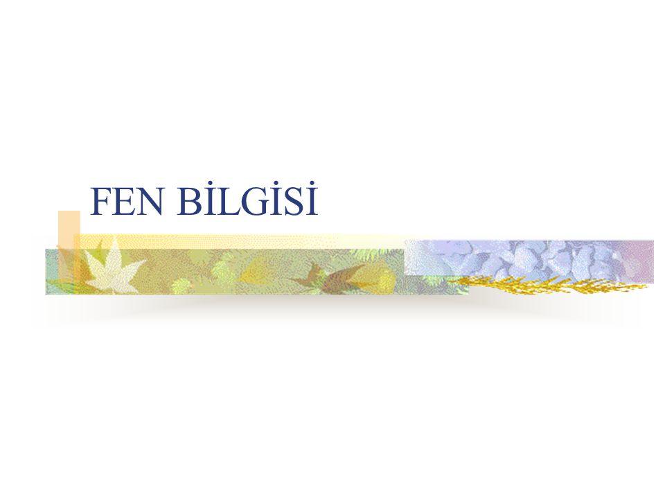 FEN BİLGİSİ
