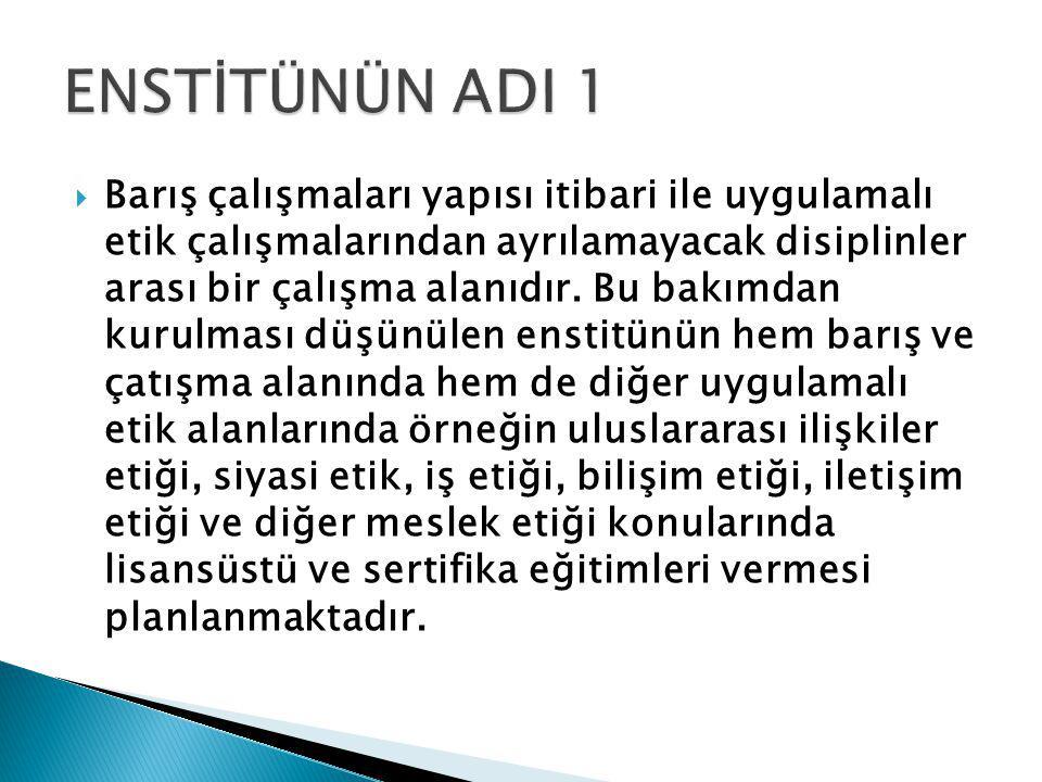 ENSTİTÜNÜN ADI 1