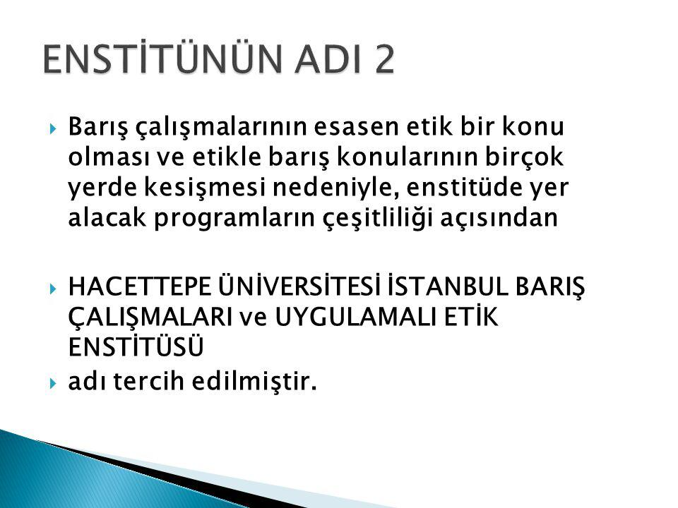 ENSTİTÜNÜN ADI 2