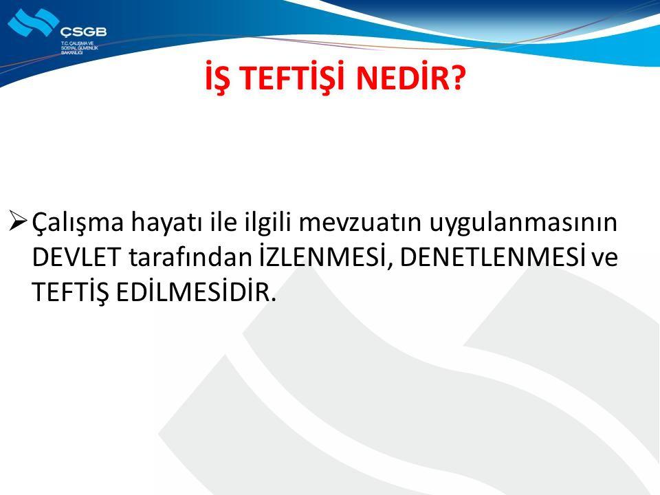 İŞ TEFTİŞİ NEDİR.