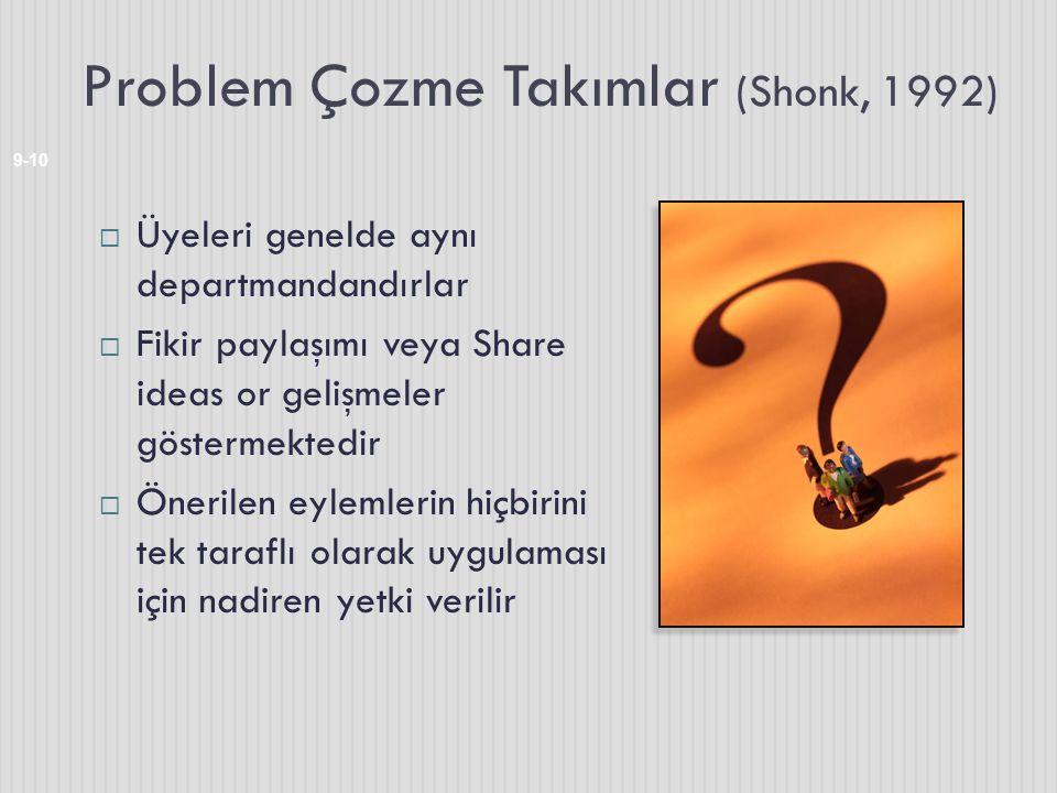 Problem Çozme Takımlar (Shonk, 1992)