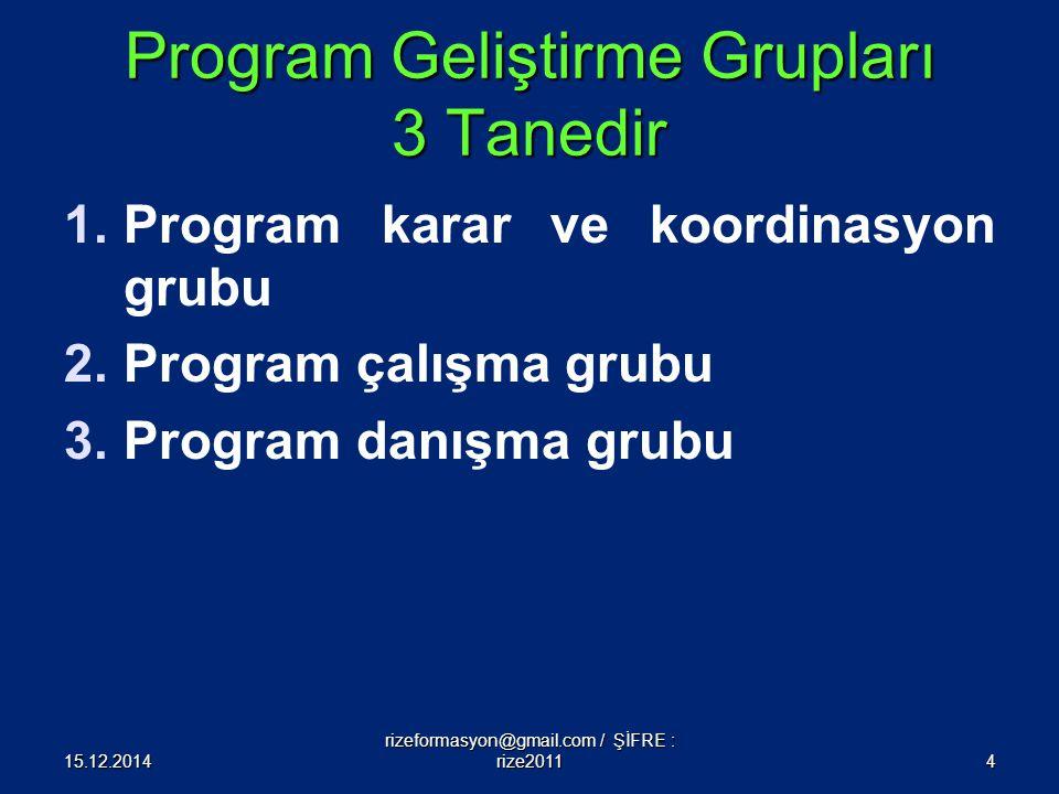Program Geliştirme Grupları 3 Tanedir