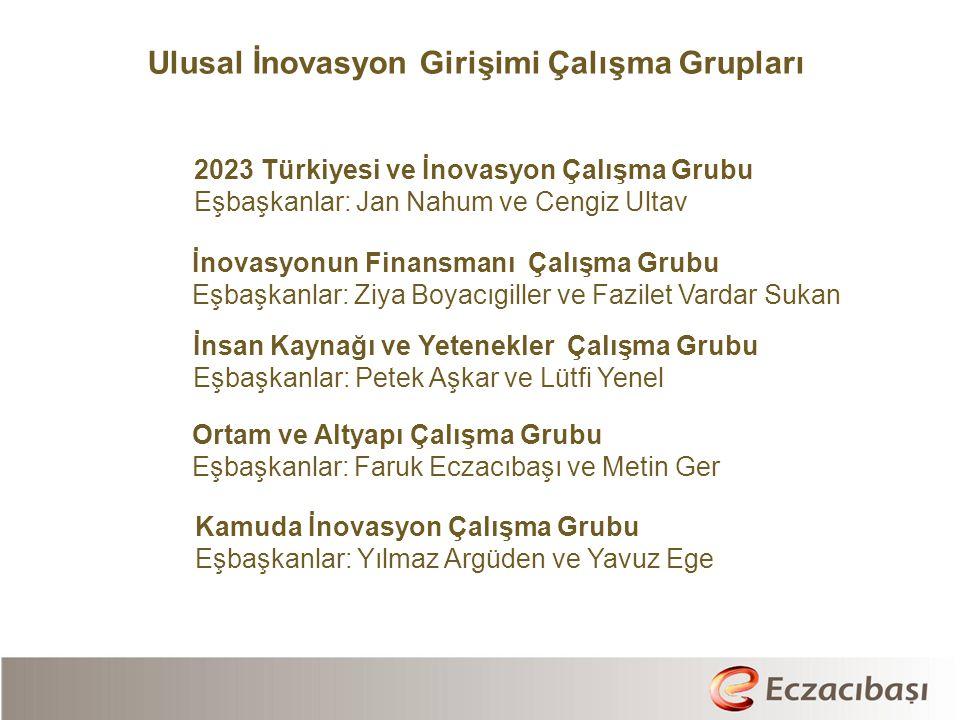 Ulusal İnovasyon Girişimi Çalışma Grupları