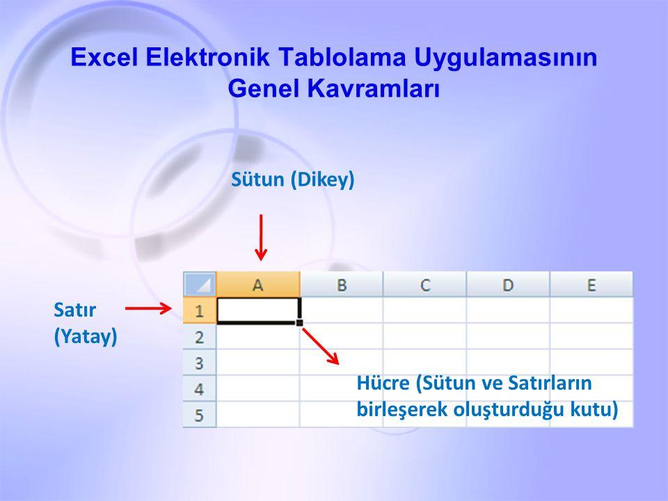 Excel Elektronik Tablolama Uygulamasının Genel Kavramları
