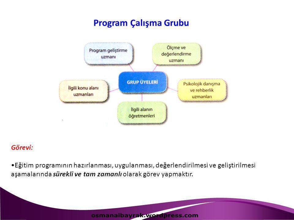 osmanalbayrak.wordpress.com Program Çalışma Grubu Görevi:
