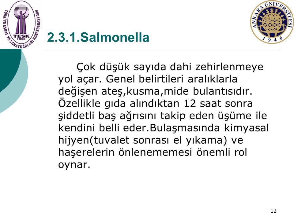 2.3.1.Salmonella