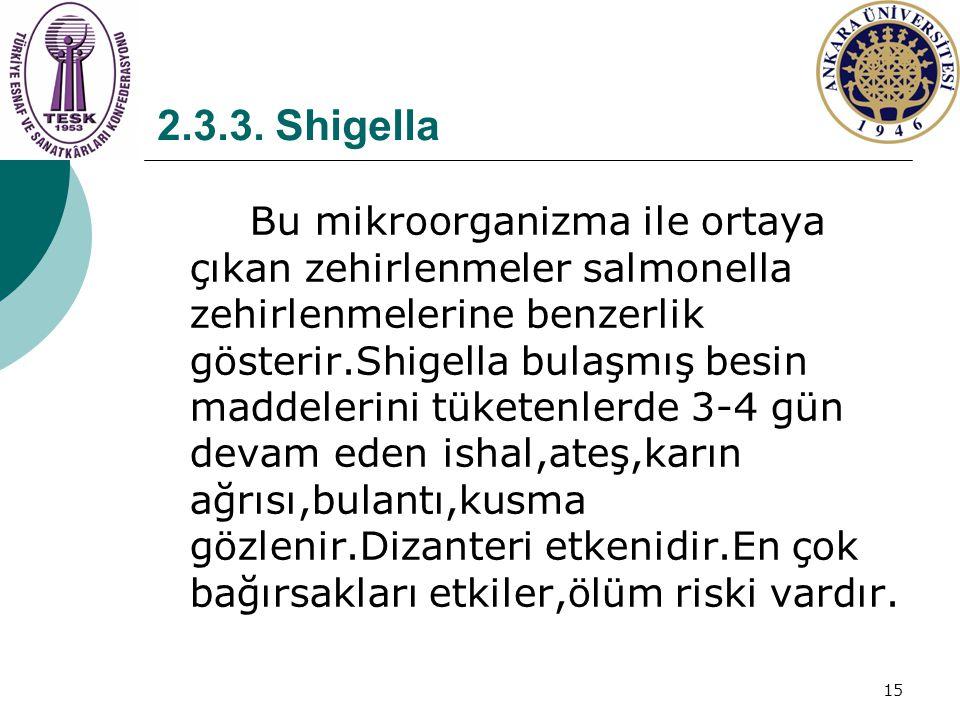 2.3.3. Shigella