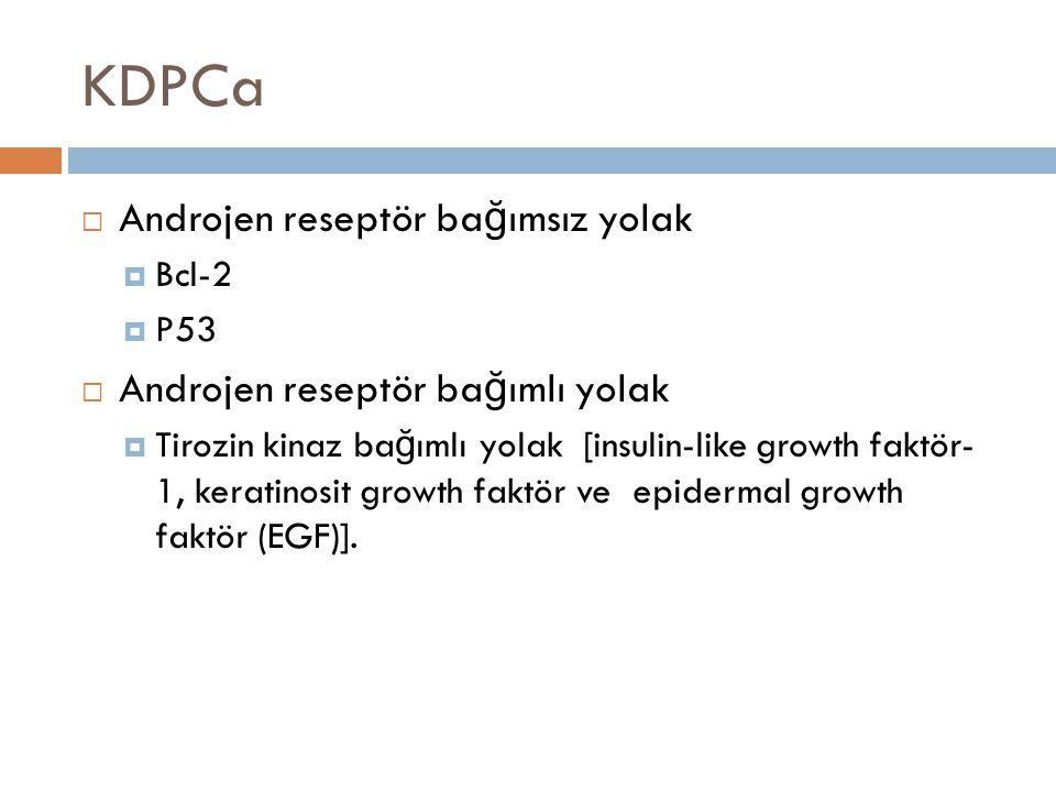 KDPCa Androjen reseptör bağımsız yolak Androjen reseptör bağımlı yolak