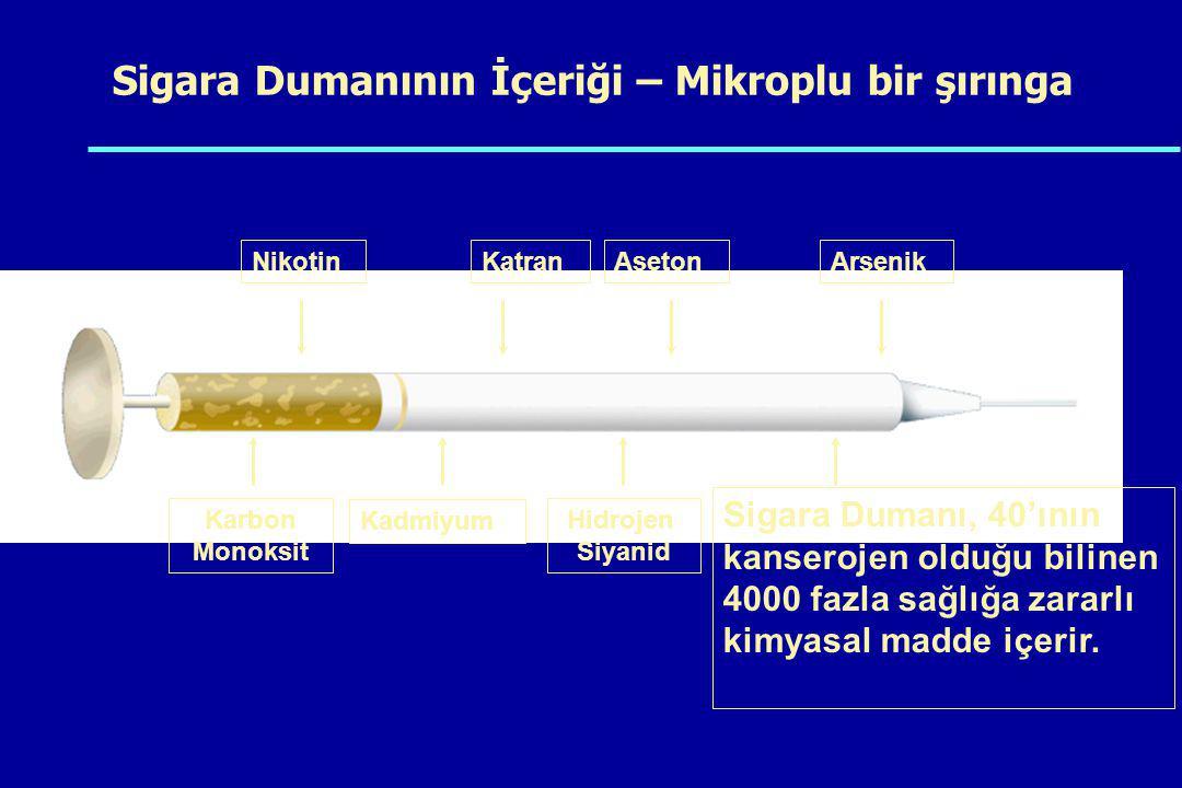 Sigara Dumanının İçeriği – Mikroplu bir şırınga