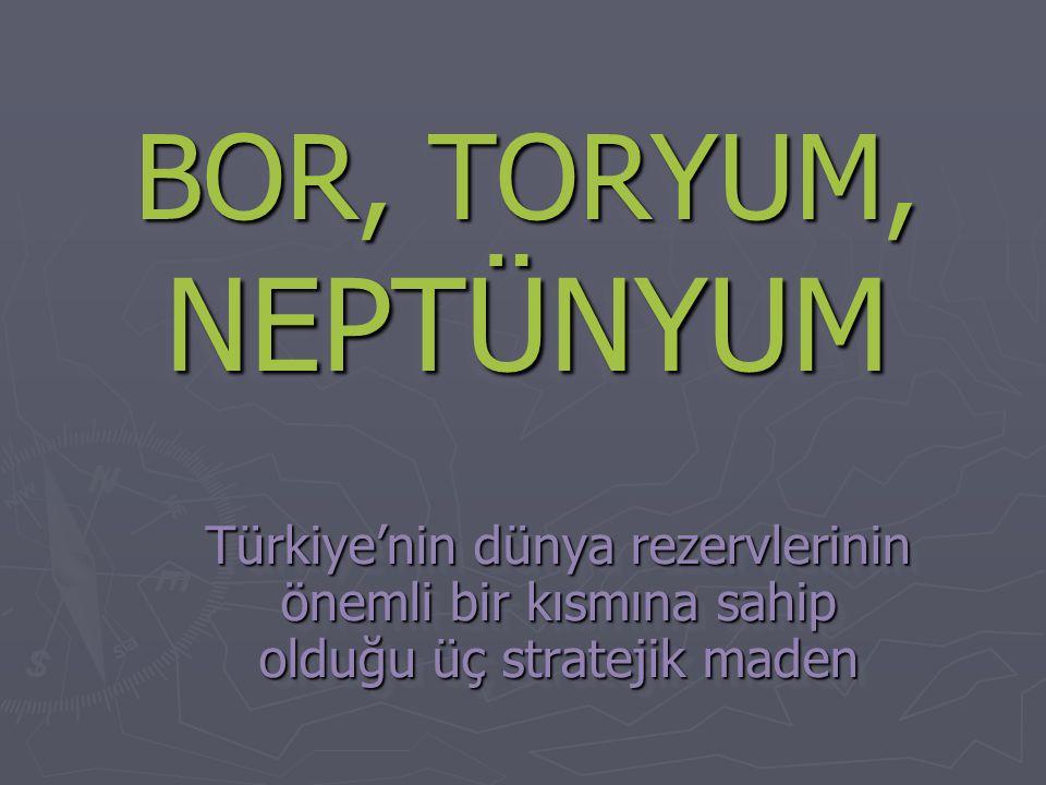 BOR, TORYUM, NEPTÜNYUM Türkiye'nin dünya rezervlerinin önemli bir kısmına sahip olduğu üç stratejik maden.