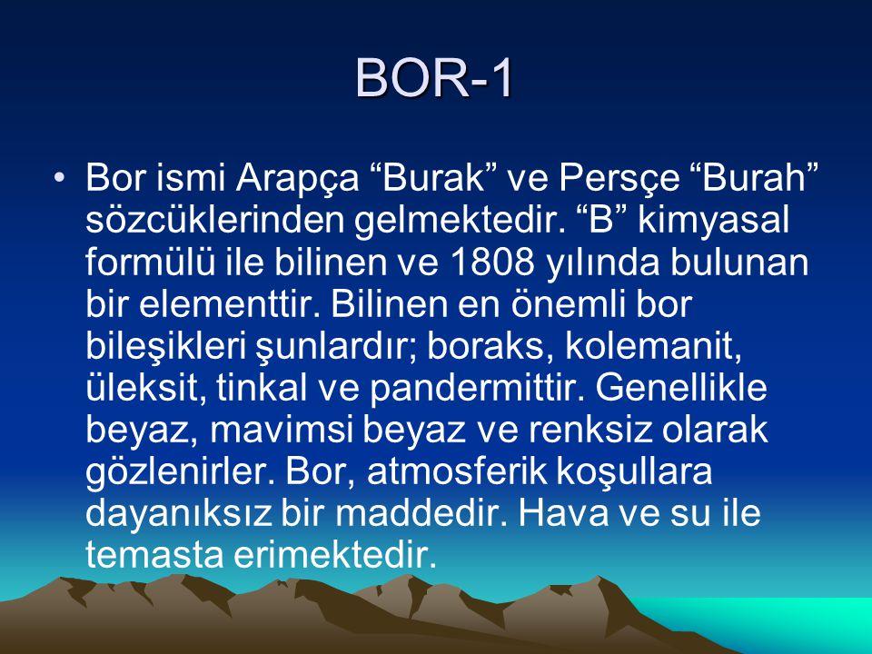 BOR-1