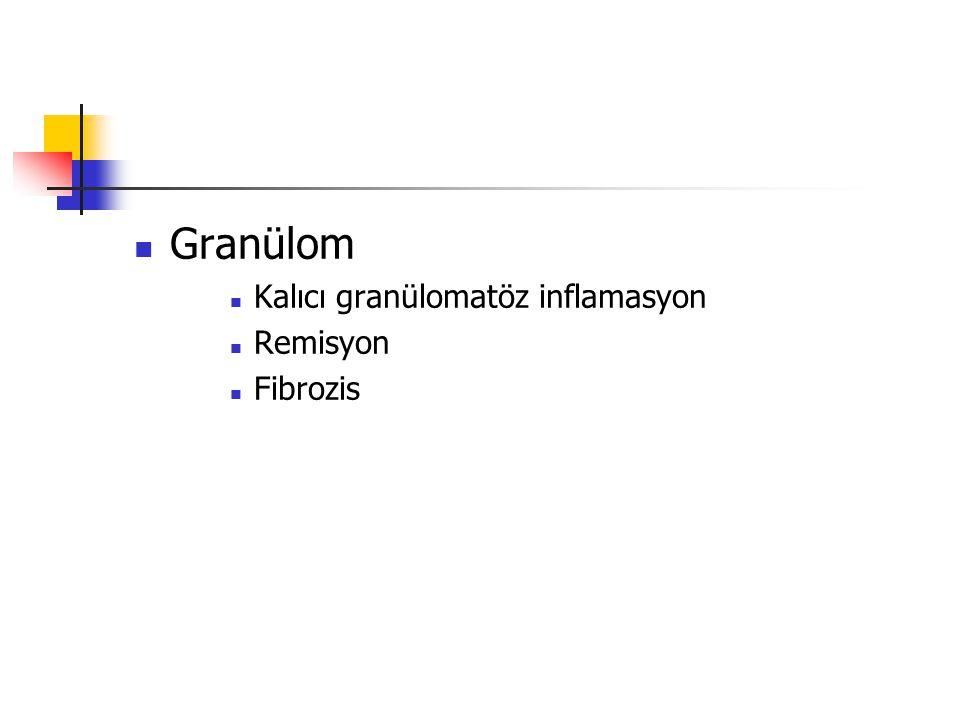Granülom Kalıcı granülomatöz inflamasyon Remisyon Fibrozis