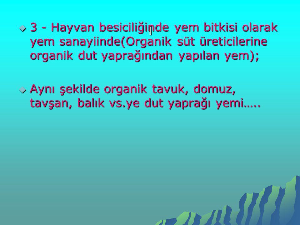 ı 3 - Hayvan besiciliğinde yem bitkisi olarak yem sanayiinde(Organik süt üreticilerine organik dut yaprağından yapılan yem);