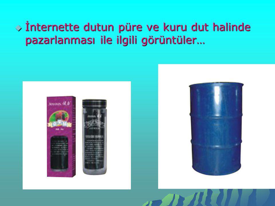 İnternette dutun püre ve kuru dut halinde pazarlanması ile ilgili görüntüler…