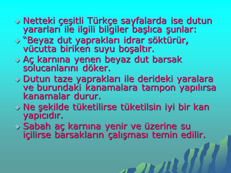 Netteki çeşitli Türkçe sayfalarda ise dutun yararları ile ilgili bilgiler başlıca şunlar: