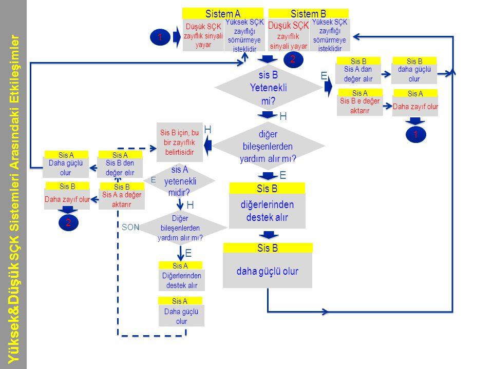 Yüksek&Düşük SÇK Sistemleri Arasındaki Etkileşimler