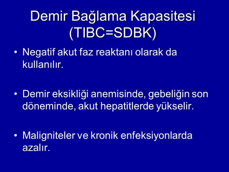 Demir Bağlama Kapasitesi (TIBC=SDBK)