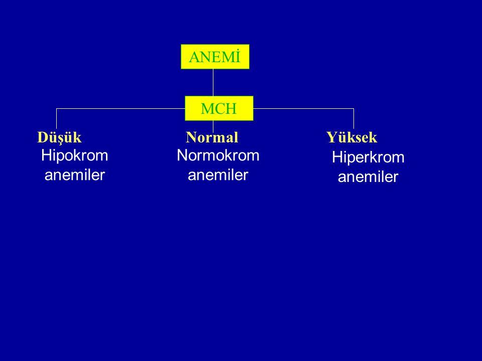 ANEMİ MCH Düşük Normal Yüksek Hipokrom anemiler Normokrom anemiler Hiperkrom anemiler