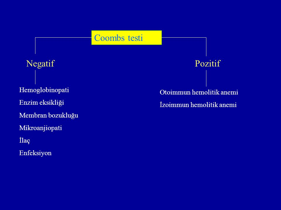 Coombs testi Negatif Pozitif Hemoglobinopati Otoimmun hemolitik anemi