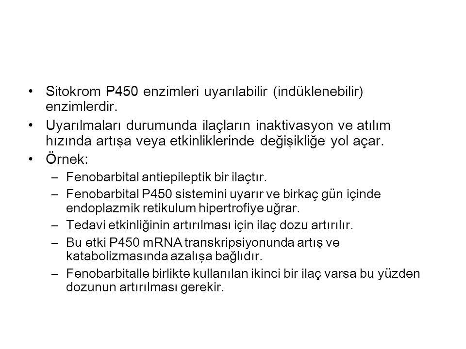 Sitokrom P450 enzimleri uyarılabilir (indüklenebilir) enzimlerdir.