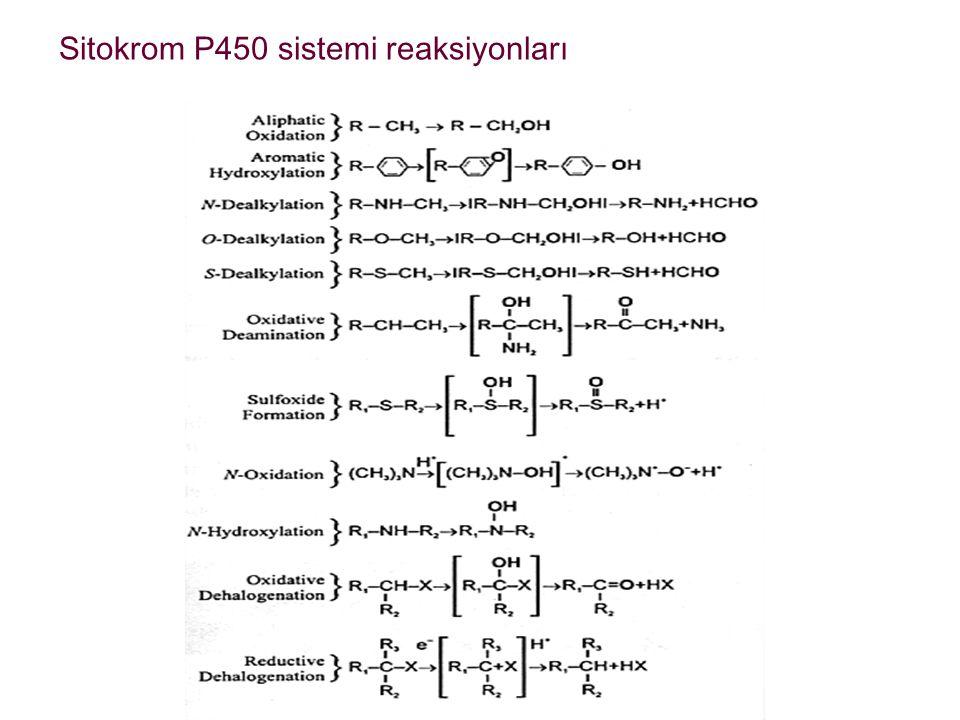 Sitokrom P450 sistemi reaksiyonları