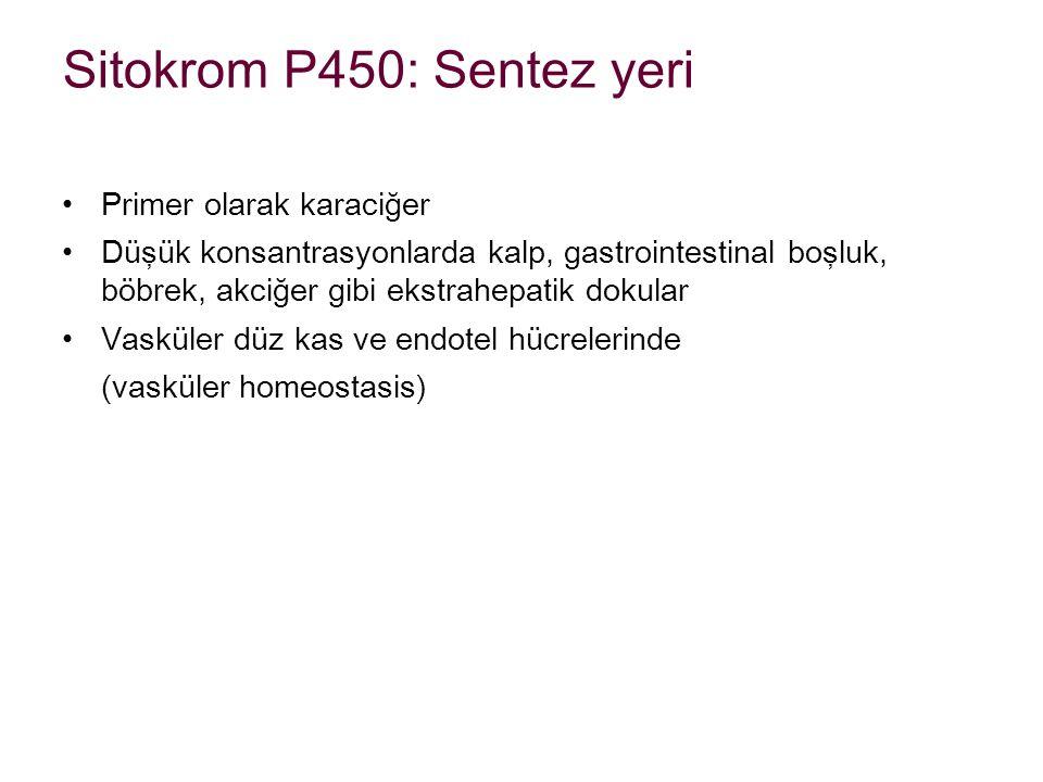 Sitokrom P450: Sentez yeri
