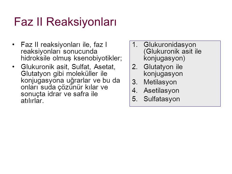 Faz II Reaksiyonları Faz II reaksiyonları ile, faz I reaksiyonları sonucunda hidroksile olmuş ksenobiyotikler;