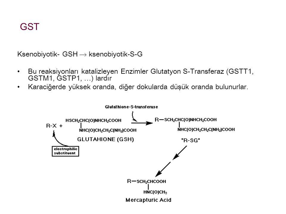 GST Ksenobiyotik- GSH  ksenobiyotik-S-G