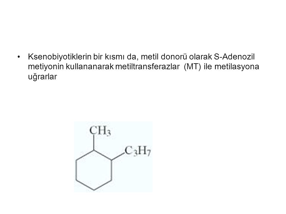 Ksenobiyotiklerin bir kısmı da, metil donorü olarak S-Adenozil metiyonin kullananarak metiltransferazlar (MT) ile metilasyona uğrarlar