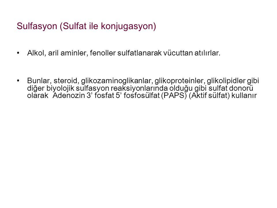Sulfasyon (Sulfat ile konjugasyon)