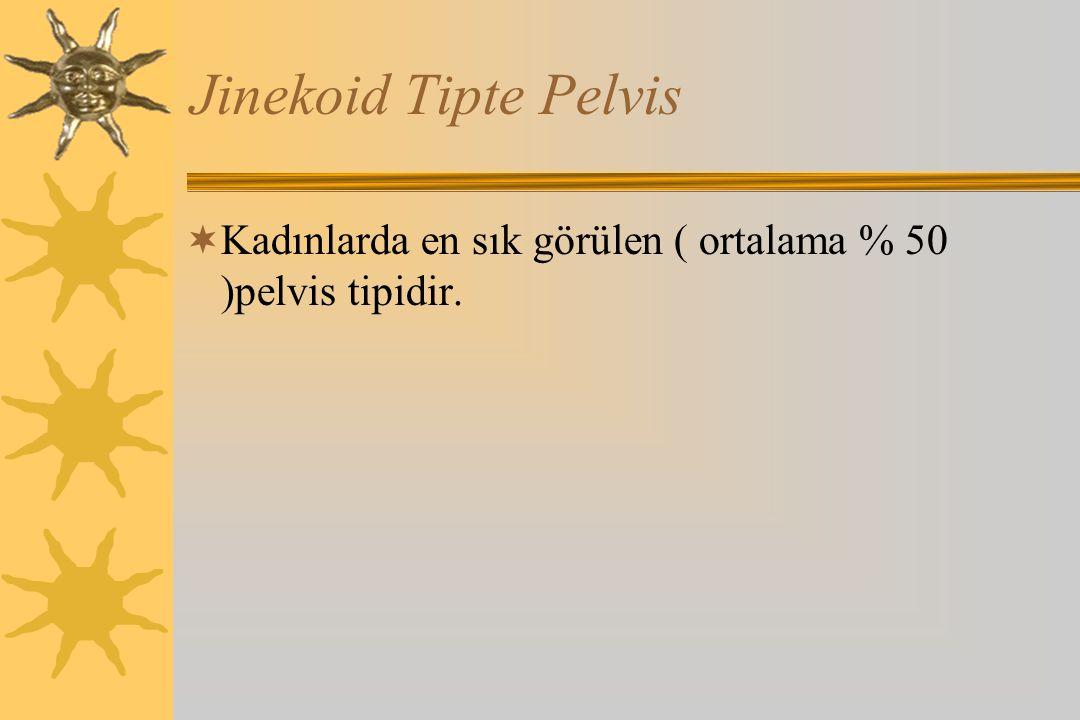 Jinekoid Tipte Pelvis Kadınlarda en sık görülen ( ortalama % 50 )pelvis tipidir.