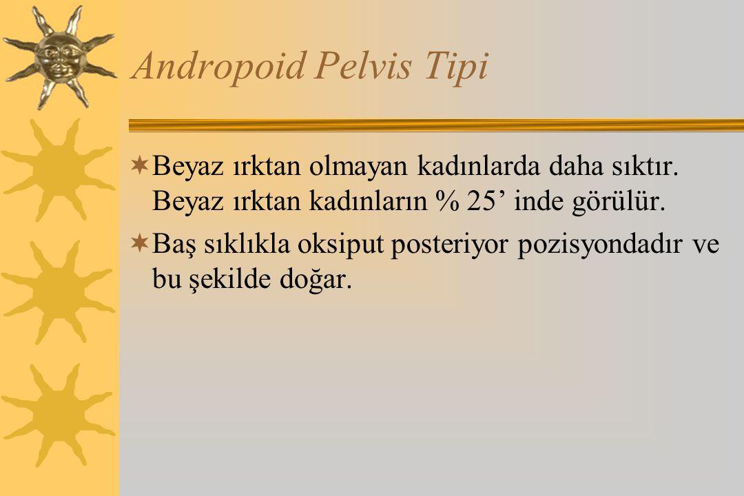 Andropoid Pelvis Tipi Beyaz ırktan olmayan kadınlarda daha sıktır. Beyaz ırktan kadınların % 25' inde görülür.