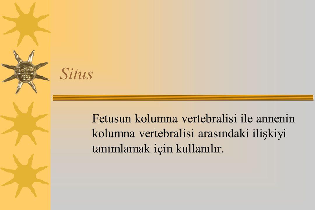 Situs Fetusun kolumna vertebralisi ile annenin kolumna vertebralisi arasındaki ilişkiyi tanımlamak için kullanılır.