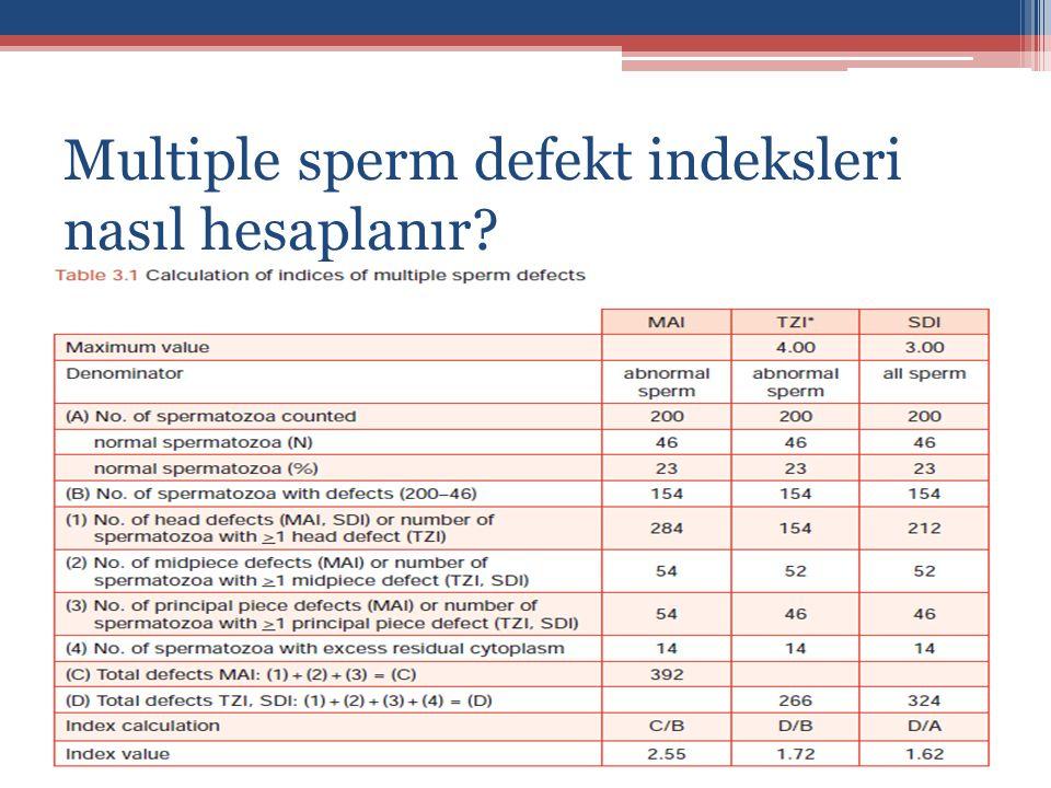 Multiple sperm defekt indeksleri nasıl hesaplanır