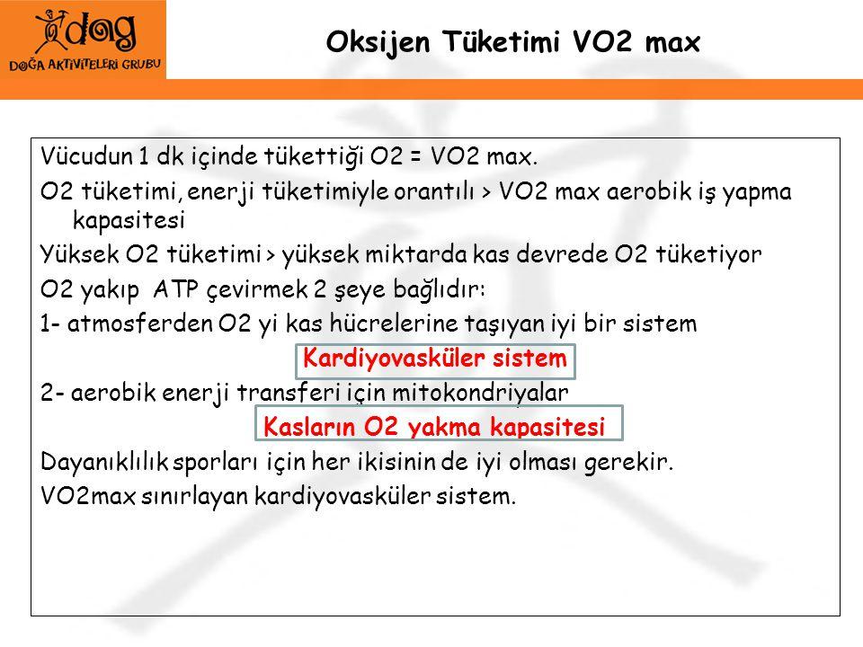 Oksijen Tüketimi VO2 max