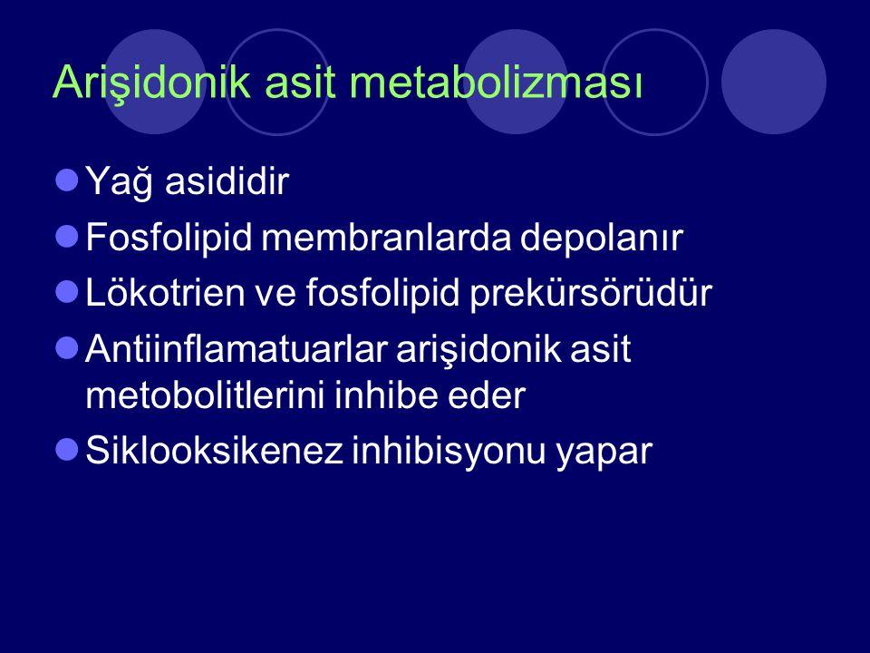 Arişidonik asit metabolizması