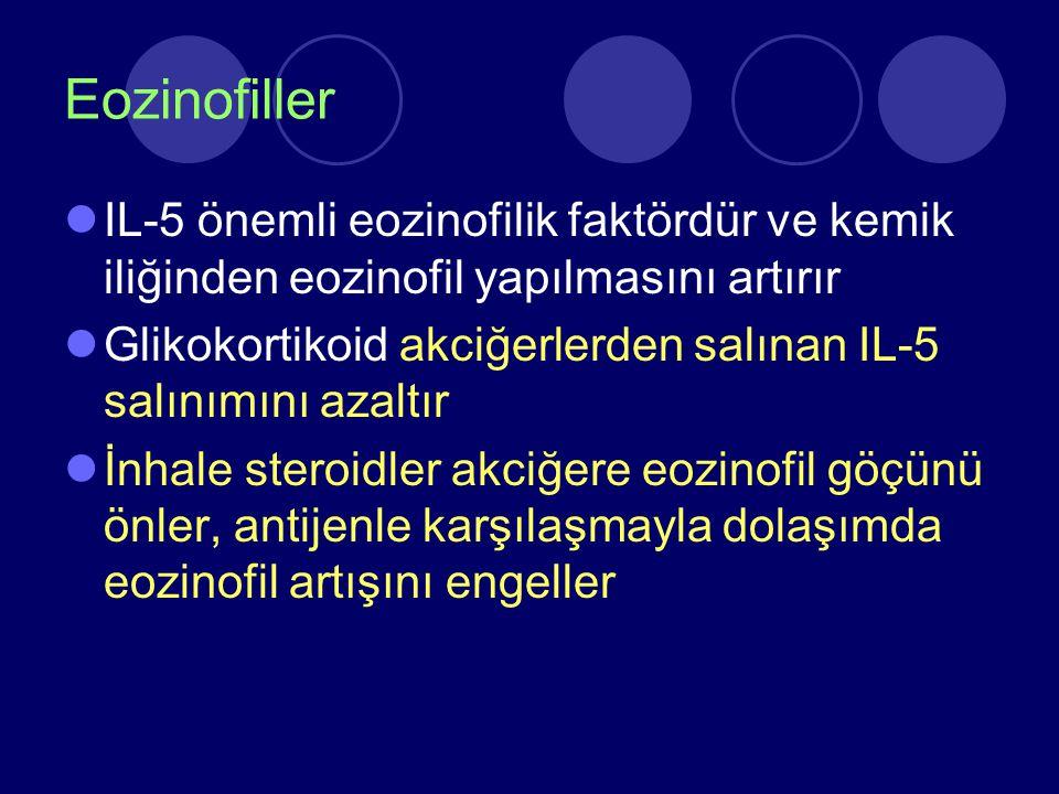 Eozinofiller IL-5 önemli eozinofilik faktördür ve kemik iliğinden eozinofil yapılmasını artırır.