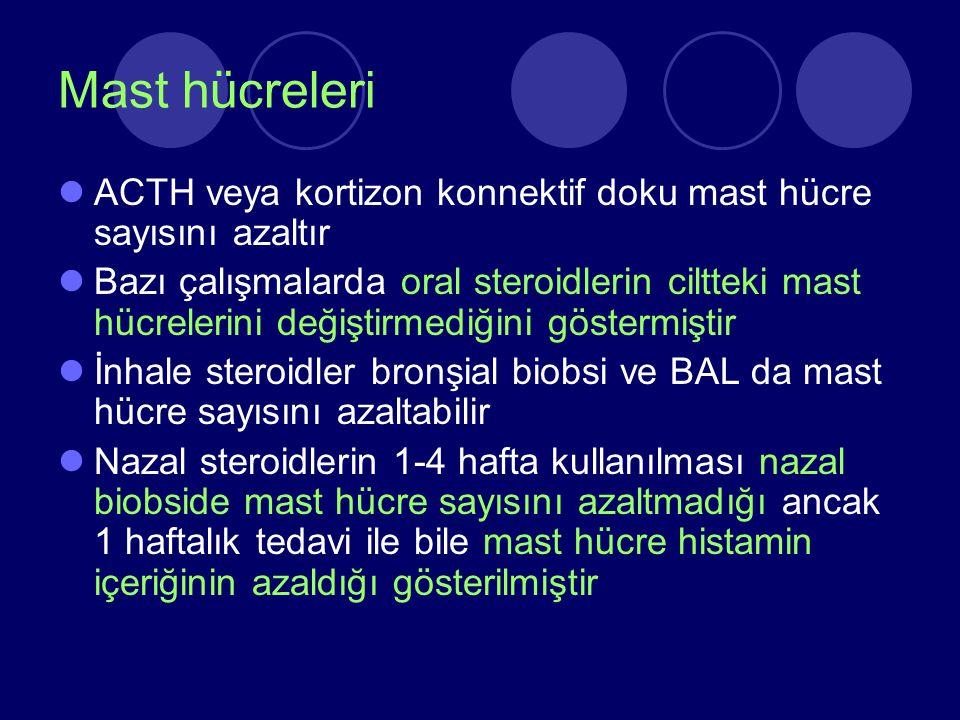 Mast hücreleri ACTH veya kortizon konnektif doku mast hücre sayısını azaltır.